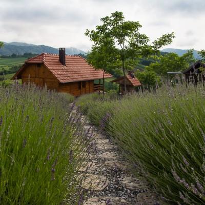 Imanje Galić - Vulišinec - Lepoglava