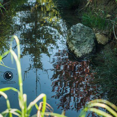 Usputne refleksije dok točiš vodu na izvoru u Škriljevcu