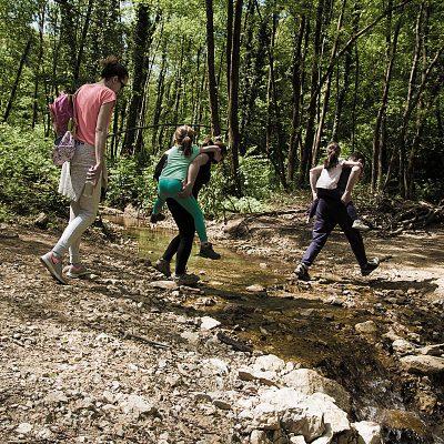 Forsiranje potoka