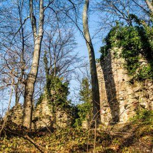 Ostaci ostataka stare ivanovačke utvrde- istočni zid u kasno proljeće